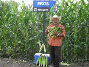 Elotes de Eros