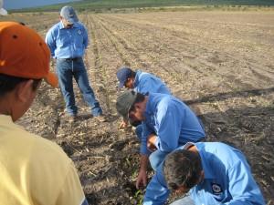 El equipo de Unisem en un taller de siembras