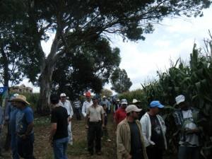Evento en verde Jaquetas, 13102012 (14)